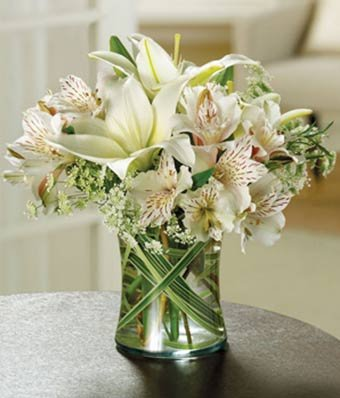 Morning Glory Flowers - Same Day Sympathy Flowers Delivery - Condolence Flowers - Funeral Flower Arrangements - Sympathy Plants