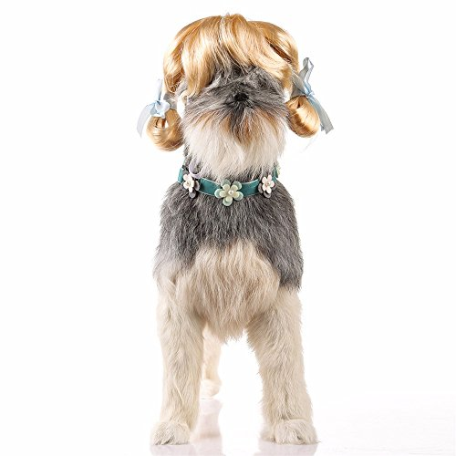LisYOU Pet Dog Cat Fashionable Pet Meatball-Like Hairstyle Wig Hat (one Size,Gold)