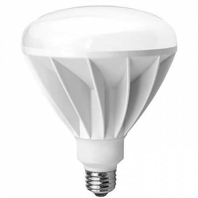 TCP LED14E26BR4024K LED Light Bulb 14-watt BR40 2400K Floodlight, 2700-Kelvin