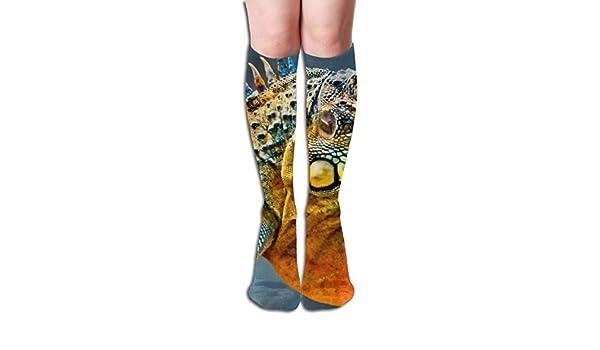 Thigh High Long Stockings Over Knee Socks Casual Socks With Colourful Iguana Lizard Print