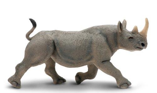 rhino model - 2