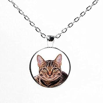 Collar con colgante de fotos de gato, gato amantes regalos, Pet fotos collar Cat joyas I Love gatos: Amazon.es: Juguetes y juegos