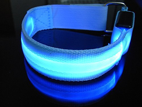 DDQ LED Light Armband Safely Walking and Running Flashing Wristband -Blue by DDQ B00KUS6FWY