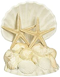 Lillian Rose CT440 Coastal Seashell Cake Top, 5-Inch