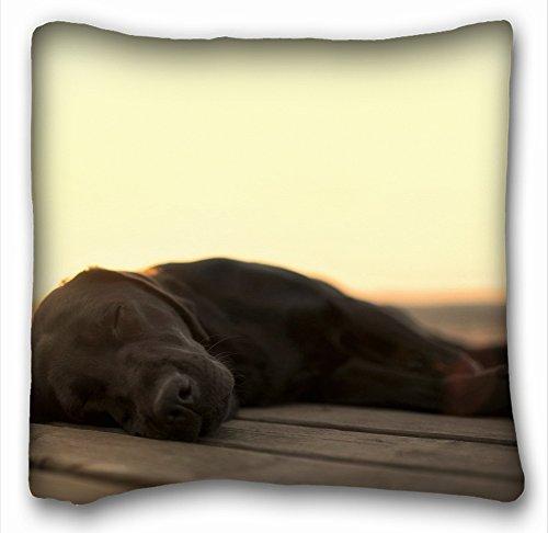 Decorativo cuadrado manta funda de almohada animales perro libro S acouple cachorros 45.7x 45.7cm dos laterales