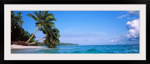 GreatBIGCanvas ''Palm trees on the beach, Indonesia'' Photographic Print with Black Frame, 48'' x 16'' by greatBIGcanvas