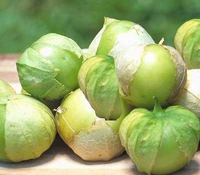 verde tomato seeds - 4