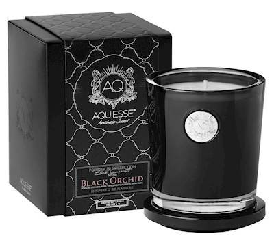 Aquiesse Orchid 11oz Black Currants Gift Boxed Scented Soy Candle ()