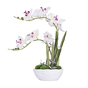 YSZL Large Artificial Potted Orchid Plant, Silk Flower Arrangement with Ceramics Vase, White