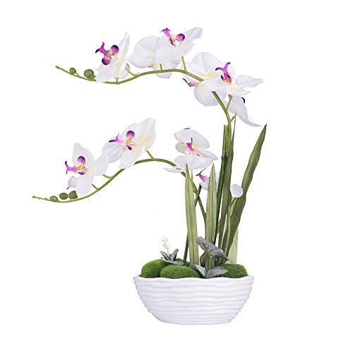 YSZL Large Artificial Potted Orchid Plant, Silk Flower Arrangement with Ceramics Vase, White