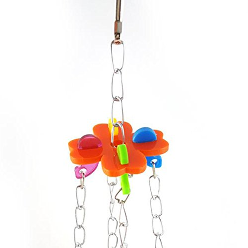Da.Wa 1Pcs Birds Basin Colorful Acacia Parrots Hanging Food Basin Feed Bowl Swing Cage Toys for Parakeet by Da.Wa (Image #3)