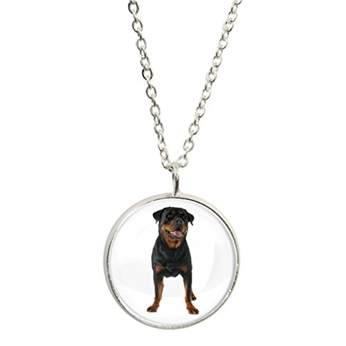 Rottweiler Dog Image Design Silver Plated Pendant and Necklace in Gift Box