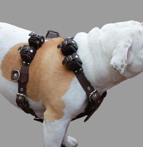 8 lbs Brown Genuine Leather Weighted Pulling Dog Harness for Exercise and Training. Fits 33''-39'' Chest, by Dogs My Love (Image #4)
