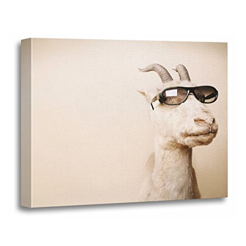 - TORASS Canvas Wall Art Print Shades The Goat Animal Sunglasses Molter Domesticated Artwork for Home Decor 16