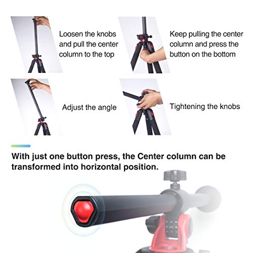 Moman Camera Tripod with Telescopic Horizontal Column Arm and Ball Head for Macro Shoot/Overhead Photography/Travel / DSLR Camera Video Camcorder by Moman (Image #6)
