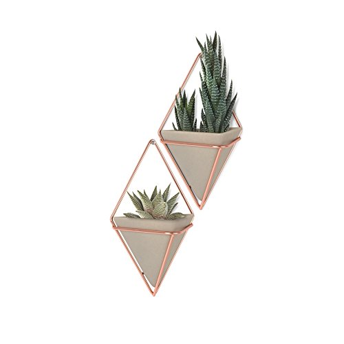 Umbra Trigg Hanging Planter Vase Geometric Wall Decor Container Great For Succulent Plants Air Plant Mini Cactus Faux Plants And More