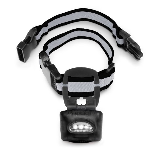 PupLight2 Bright Reflective Safety Black