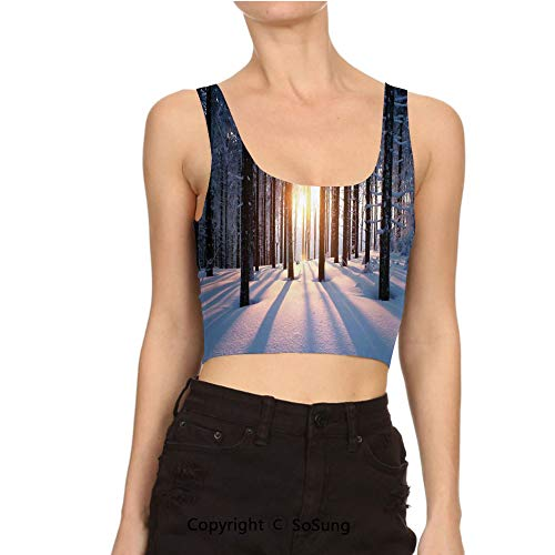 (Women Short Tee Shirt Sunset in Woodlands with Freezing Crop Top Vest Tank)