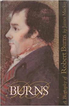 a biography of robert burns a novelist Robert burns born in alloway, scotland, on january 25, 1759, robert burns was the author of poems, chiefly in the scottish dialect (1786) and tam o' shanter (1795) read more.