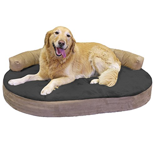 Integrity Bedding Integrity Orthopedic Memory Foam Joint Relief Bolster Dog Bed (MED - XL) Licorice Large
