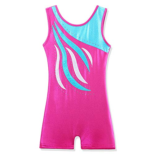 Price comparison product image BAOHULU Leotard for Girls Gymnastics Toddler Sparkle Embroidery Tank Biketards One Piece B165_HotPinkBlue_120