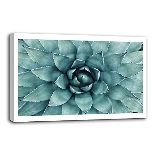 - AMEMNY Large Wall Art Blue Agave Canvas Prints Agave Flower Art Giclee Canvas Printing Extra Large Canvas Wall Art Print Home Decorations Stretched and Framed Ready to Hang