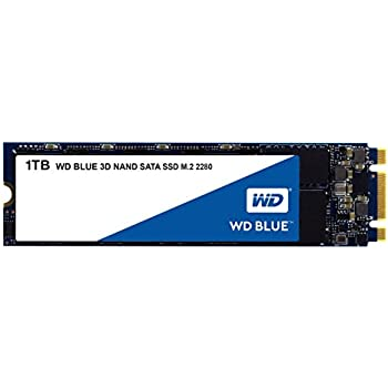 WD Blue 3D NAND 1TB PC SSD - SATA III 6 Gb/s M.2 2280 Solid State Drive - WDS100T2B0B