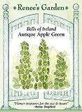 Bells of Ireland, Antique Apple Green