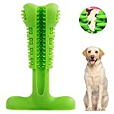 Best Dog Toothbrushes - Dog Toothbrush Stick-Puppy Dental Care Brushing Stick Effective Review