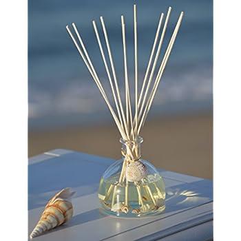 Amazon.com: Manu Home NEW! Ocean Oil Reed Diffuser ~ 5oz