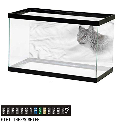 bybyhome Fish Tank Backdrop Hunting,Wild Lynx Norway,Aquarium Background,36