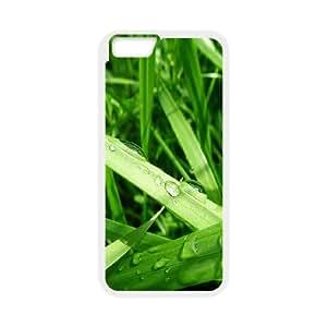 Grass 4 IPhone 6 Plus Cases, Case Iphone 6 Plus Case 5.5 Fashionable Okaycosama - White