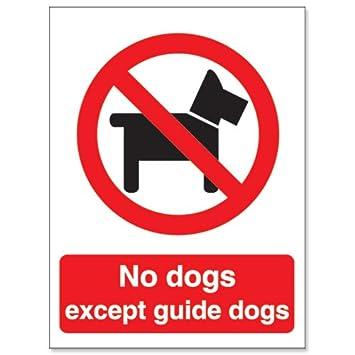 Stewart Superior P091SAV - Cartel de prohibido perros ...