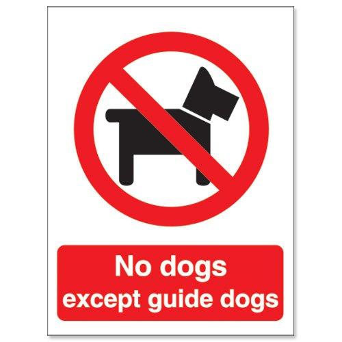 Stewart Superior P091SAV - Cartel de prohibido perros (adhesivo), diseño con textoNo dogs except guide dogs 687562