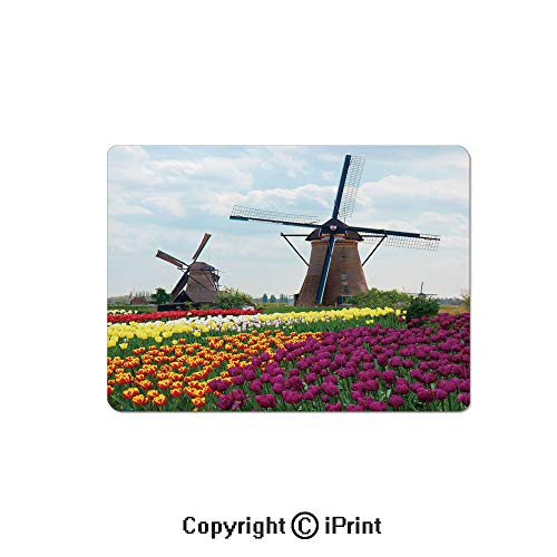 Gaming Mouse Pad Custom,Bedding Plants of Netherlands Farm Country Heritage Historical Architecture Mouse Mat,Non-Slip Rubber Base Mousepad,7.9x9.5 inch,Multicolor