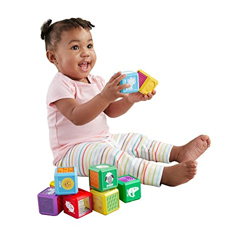 (Fisher-Price Laugh & Learn First Words Animal Blocks)