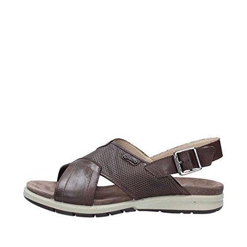 IGI Co 1129122 Sandals Men Moro HUb3AHolY
