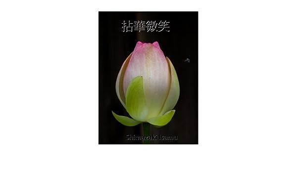 NENGE MISYOU (Japanese Edition)