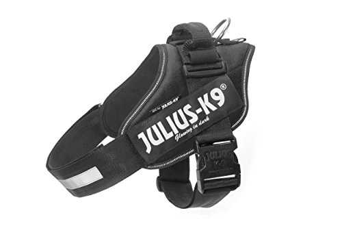 Julius-K9 IDC Powerharness with Reflective, Removeable Label, Black by Julius-K9