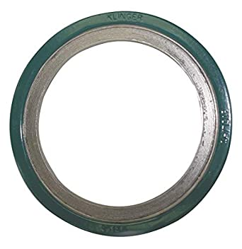 304SS and Flexible Graphite Spiral Wound Metal Gasket, 20-1/4