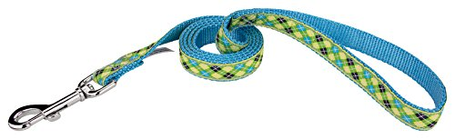 Country Brook Design | 3/4 Inch Lime Green and Blue Argyle Ribbon Dog Leash Limited Edition - 4 Foot (Grosgrain Argyle Ribbon)