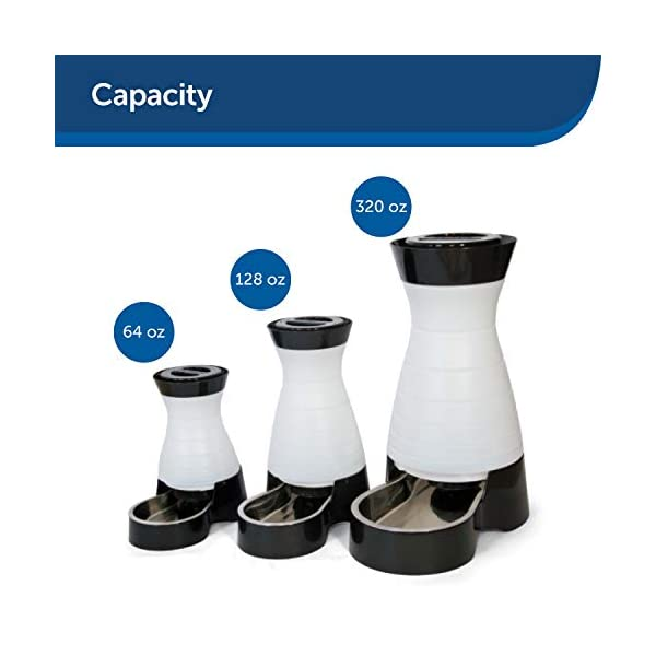 PetSafe Healthy Pet Gravity Food or Water Station, Automatic Dog and Cat Feeder or Water Dispenser, Small, Medium, Large 2