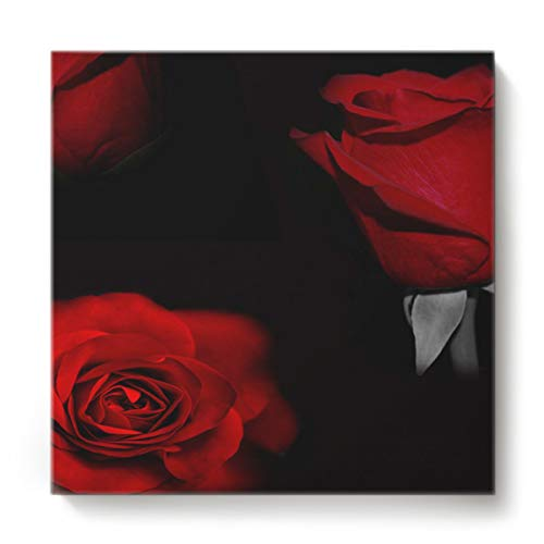 EZON-CH Canvas Wall Art Square Oil Painting Modern Artworks Office Home Decor,Red 3D Rose Flower Pattern Black Canvas Artworks,Stretched by Wooden Frame,Ready to Hang,16 x 16 -