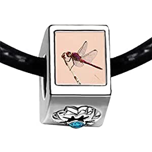Chicforest Silver Plated Beautiful Cute Dragonfly Photo Blue Zircon Crystal December Birthstone Flower Charm Beads Fits Pandora Bracelet