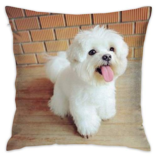 Maltese Dog One Custom Throw Pillow Cushion Cover, Decorative Square Accent Pillow Case Cover, Square 18 X 18 inches, Multicolor