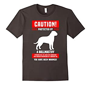Funny Bullmastiff Warning Protected By T-Shirt