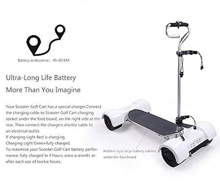 Amazon.com: How True - Patinete de golf eléctrico con 4 ...