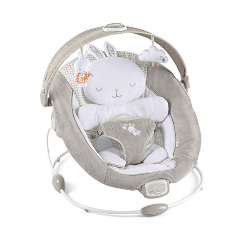 Ingenuity InLighten Bouncer, Twi...