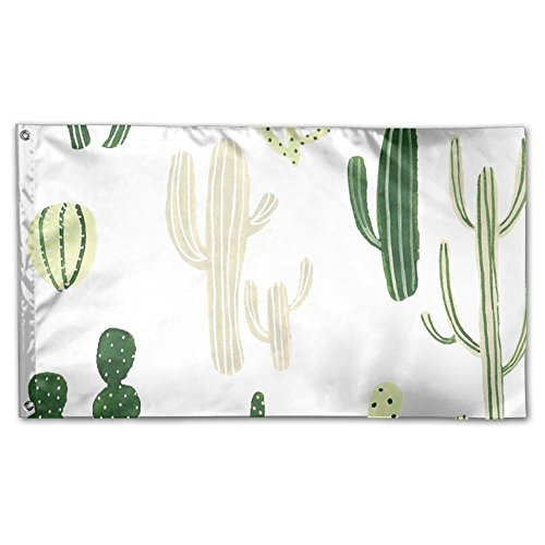 Cactus In Desert Home Garden Sign Decorated As Indoor Outdoo