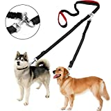Double Dog Leash - Ginmic Dual Handle Dog Leash Double Dog Leashes No Tangle 2 Dog Leash with Padded Handle Walking Training Leash, Comfortable Shock Absorbing Reflective Bungee Dog Leash for Two Dogs Large Medium Dog